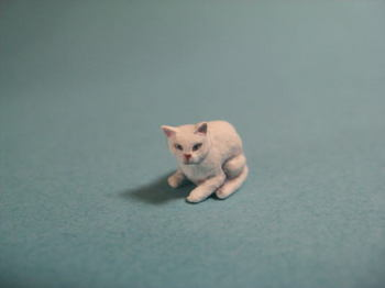 cat1-5.jpg