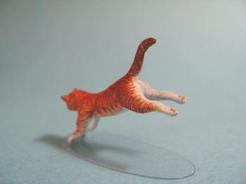 cat3-2.jpg