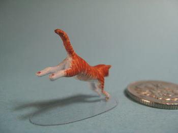 cat3-3.jpg