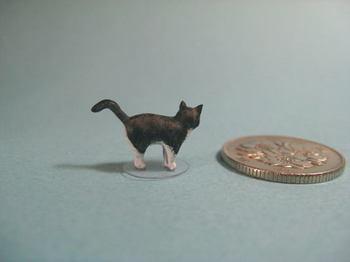 cat4-3.jpg