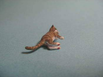cat5-3.jpg