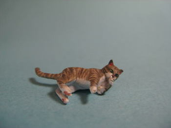cat5-4.jpg