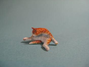 cat6-2.jpg