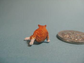 cat6-3.jpg