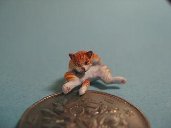 cat6-4.jpg