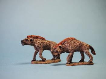 hyena5.jpg