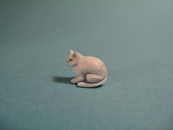 cat1-2.jpg