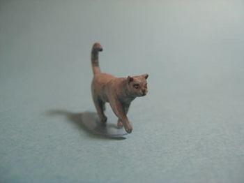 cat2-2.jpg