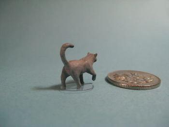 cat2-3.jpg