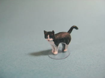 cat4-1.jpg
