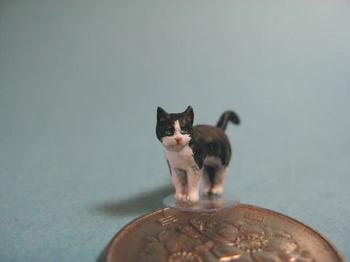 cat4-5.jpg