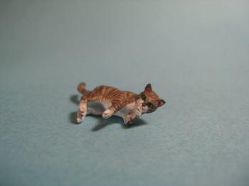 cat5-1.jpg