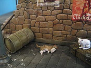 cat5-j.jpg