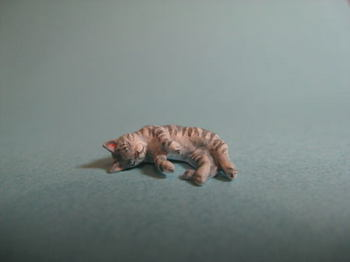 cat7-4.jpg